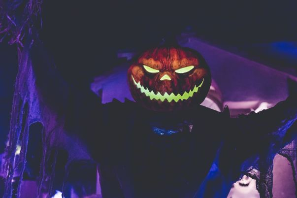 neonbrand-ASNSoeead70-unsplash